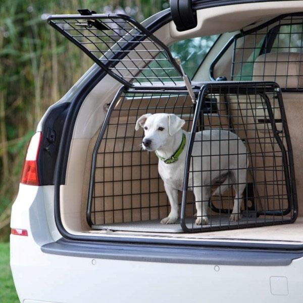 Hundetransport