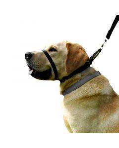Smart anti træk hundesele