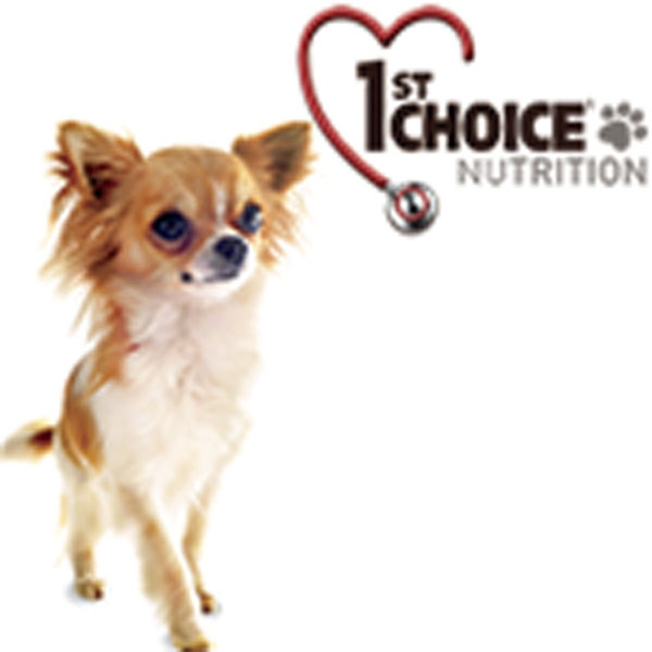 1st choice hundemad