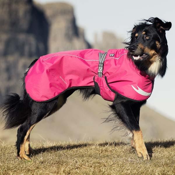 Hunderegntøj